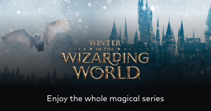 Wizarding World On Sale